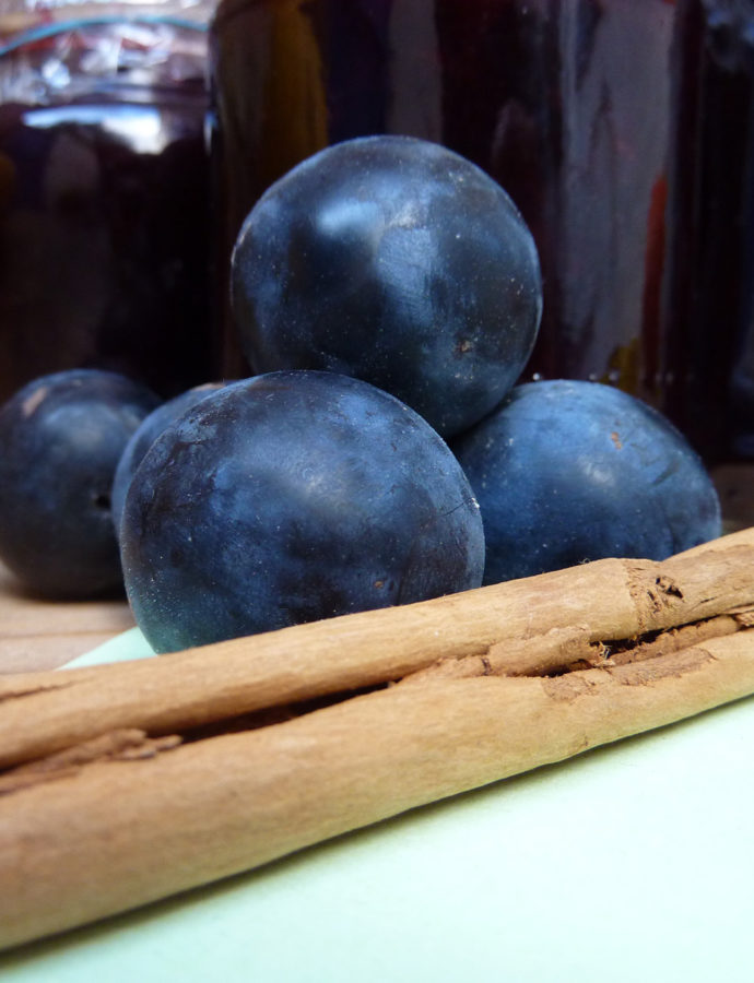 five ways with… a ton of damsons