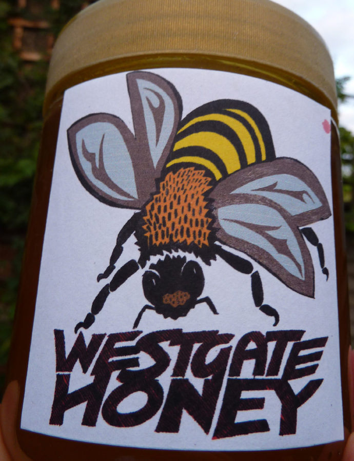 keeping bees in the city – advice from a local expert