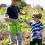 brothers at the allotment