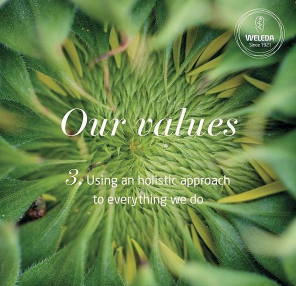 Weleda values_ethical - nipitinthebud.co.uk