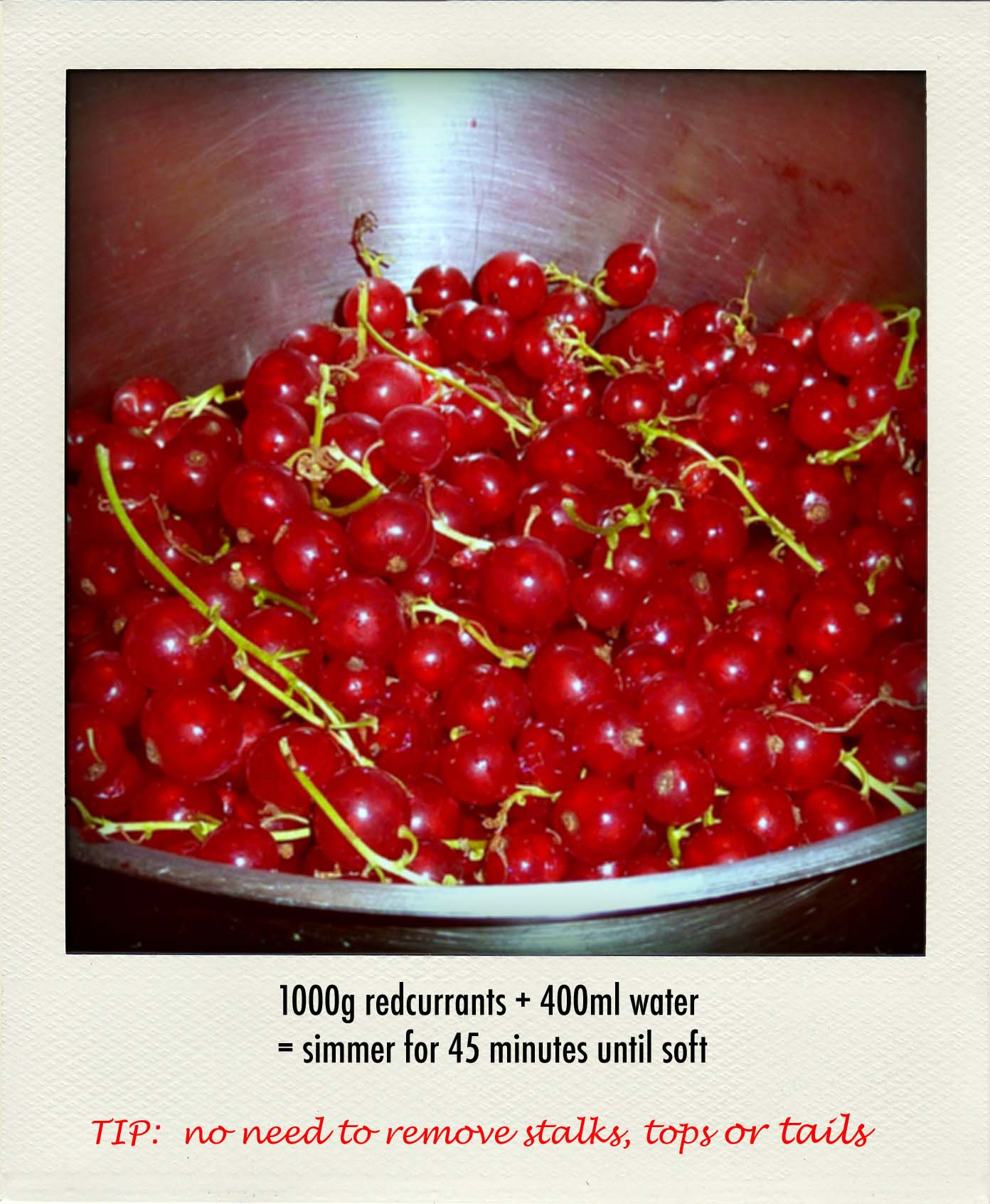 redcurrant jelly 1_in pan-pola copy