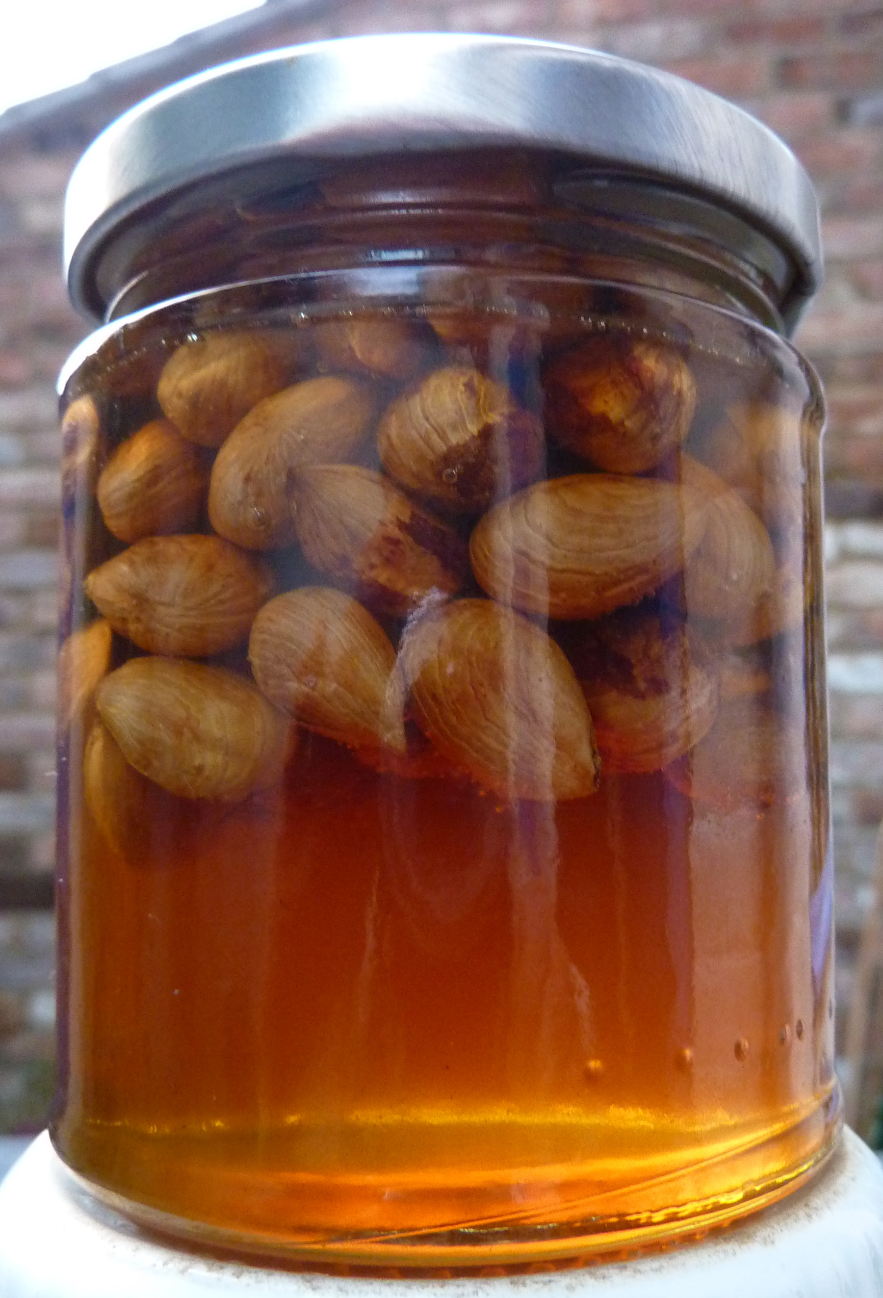 cobnuts_honeyed in jar