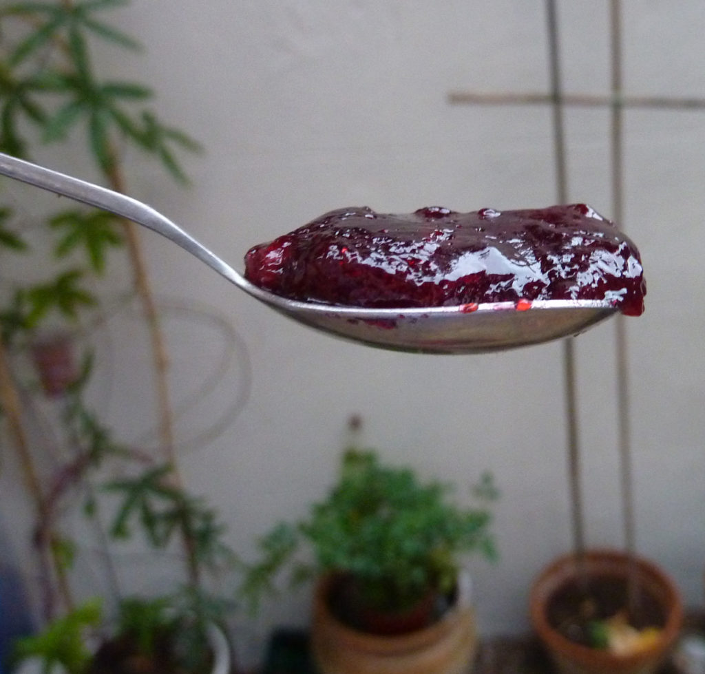 damson jam on spoon