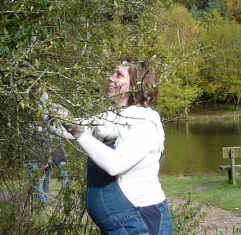 sloe picking in the Forest of Dean