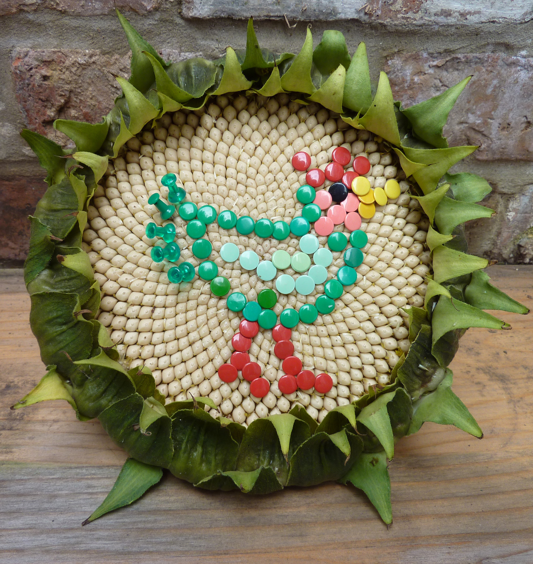 sunflower art - chicken with drawing pins