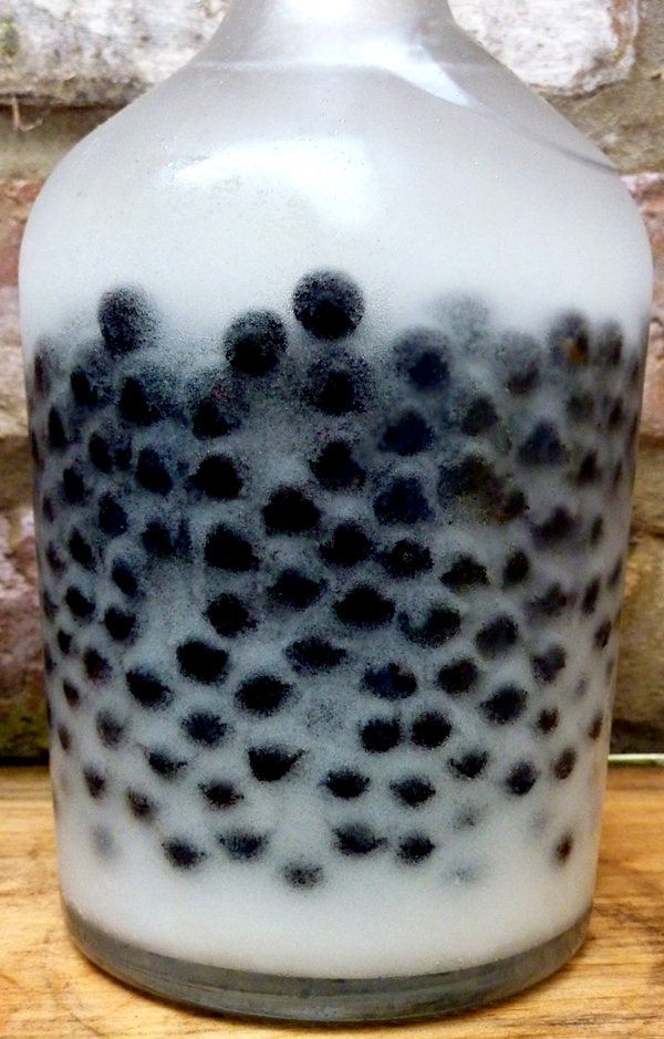 making sloe gin_shake up