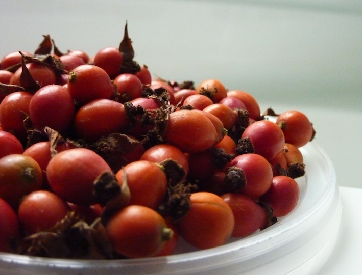 haw berries, crab apples and rosehips