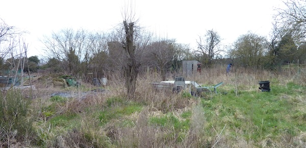 29-3-13 - overgrown plot towards shed 4B