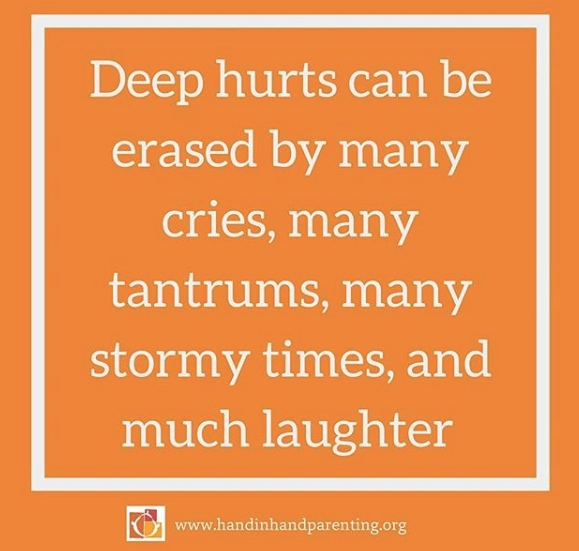 Hand in Hand parenting meme - deep hurts are erased by many cries copy