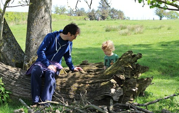 Father and son looking at bugs inside a fallen down tree trunk