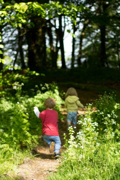 Cranham Woods_toddlers running - nipitinthebud.co.uk
