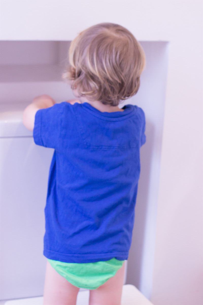 Toddler flushing the toilet_potty training - nipitinthebud.co.uk