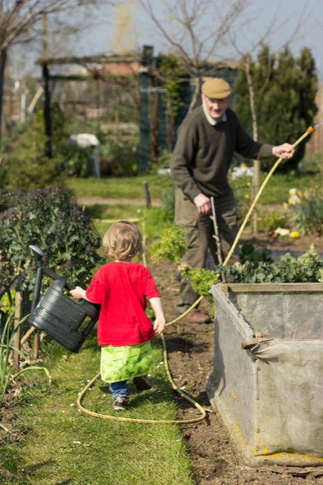 toddler allotment help - nipitinthebud.co.uk